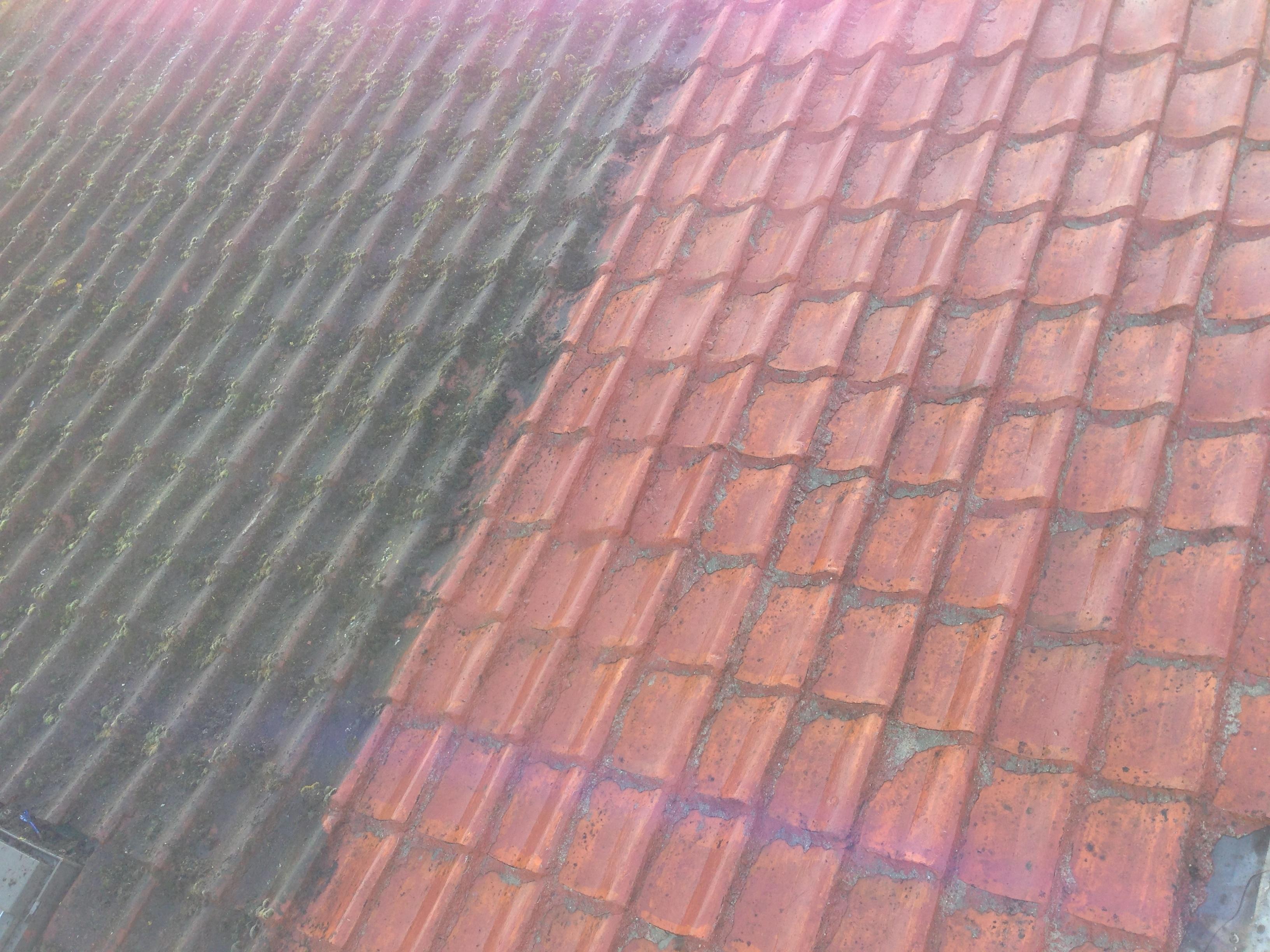 Ontmossen van daken